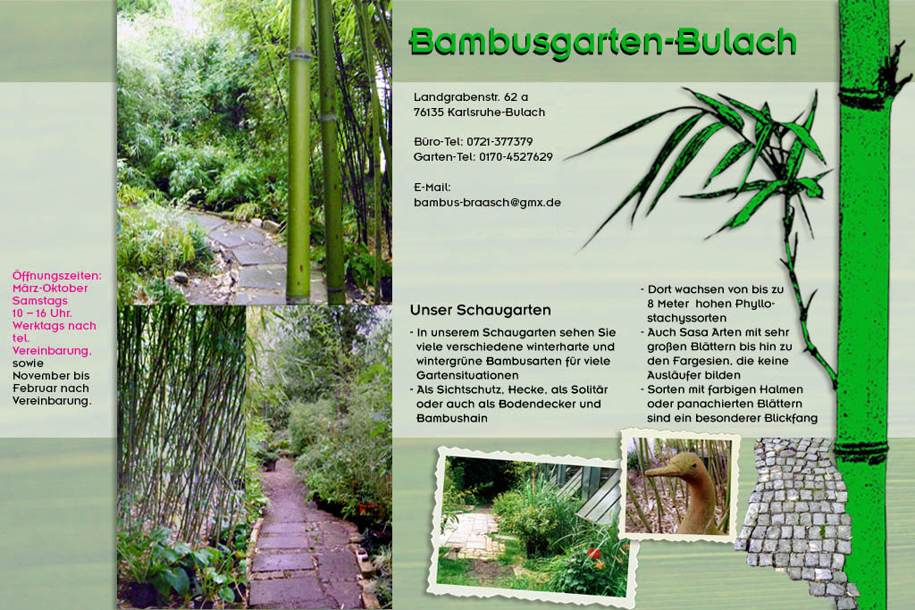 Willkommen Auf Der Homepage Von Bambusgarten Bulach De Unser